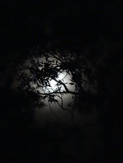 Moon 05