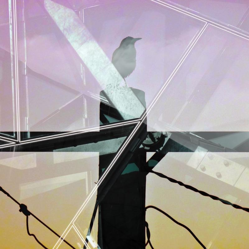 maggie tele pole glass